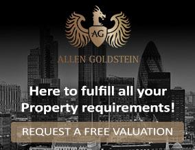 Get brand editions for Allen Goldstein, Bloomsbury