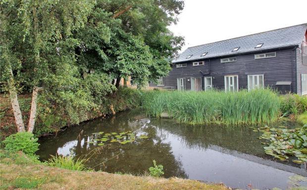 Pond Plot 2
