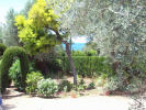 property for sale in Mallorca, Port des Canonge, Port des Canonge