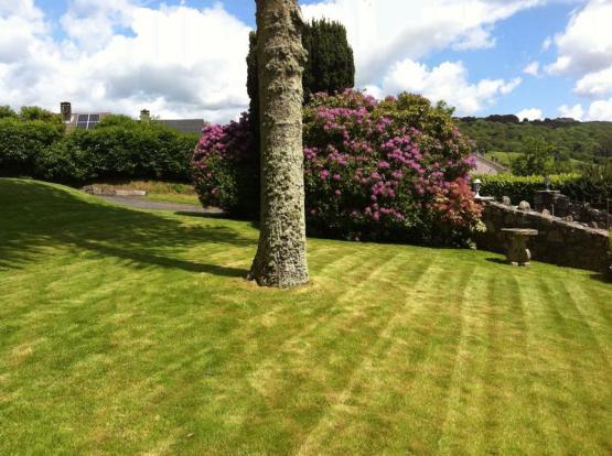 Front Garden/S...