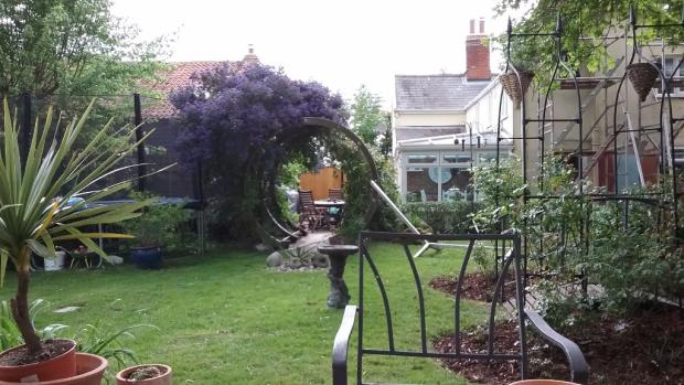 Summer garden shot