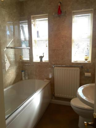 siskin bathroom .jpg