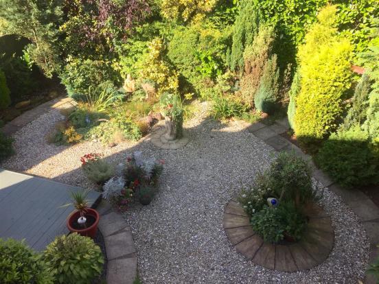 siskin garden .jpg