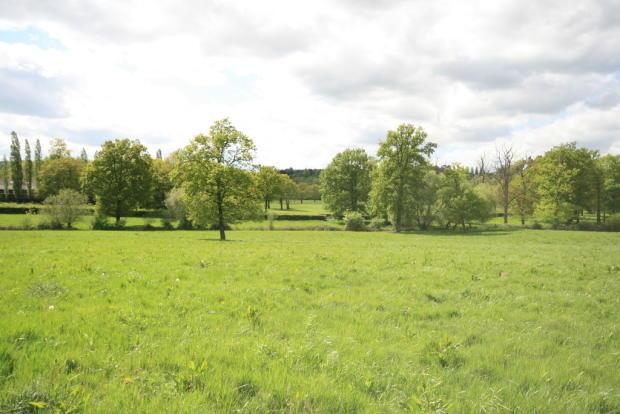 South facing view