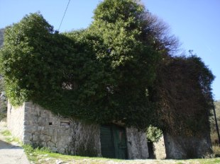Prcanj Stone House for sale