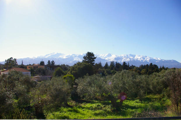 White Mountains View