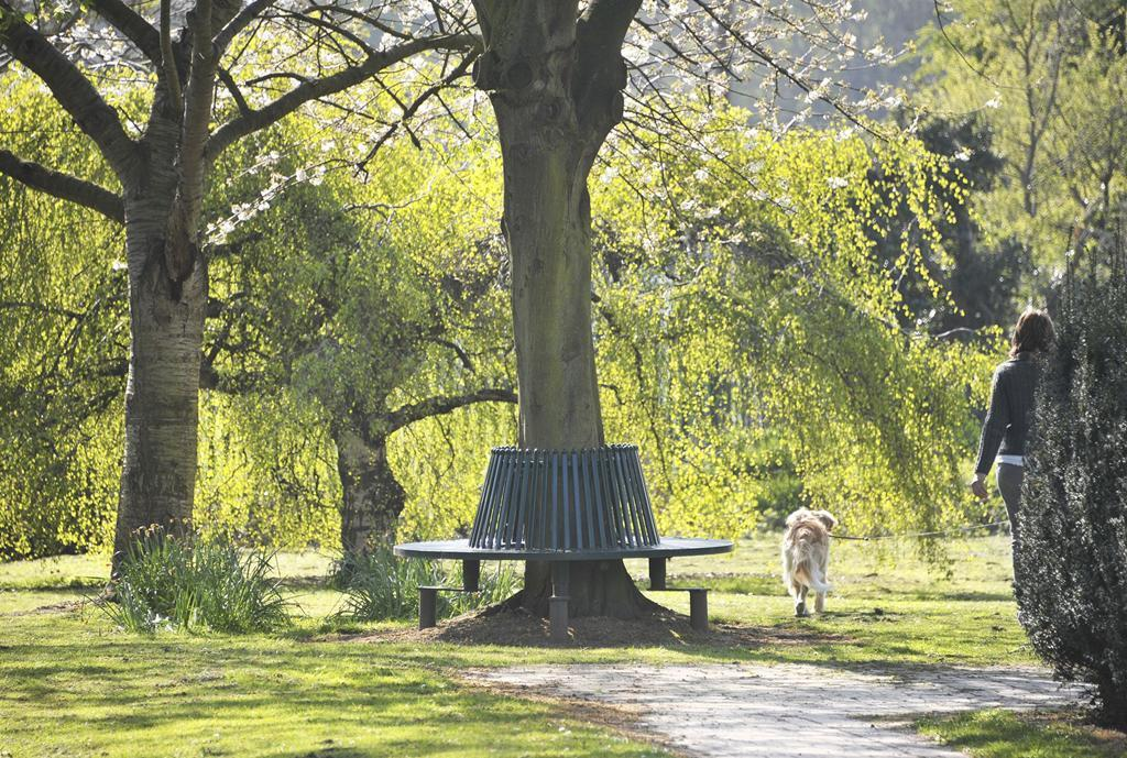 Wwhetstone Park