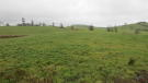 property for sale in Shantonagh, Carrickmacross, Monaghan