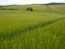 Land for sale in Leslie, Insch AB52 6NP