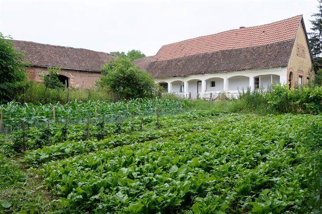 Kaposvár property