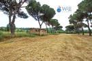 Lazio Farm Land