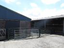 10. Cattle Court