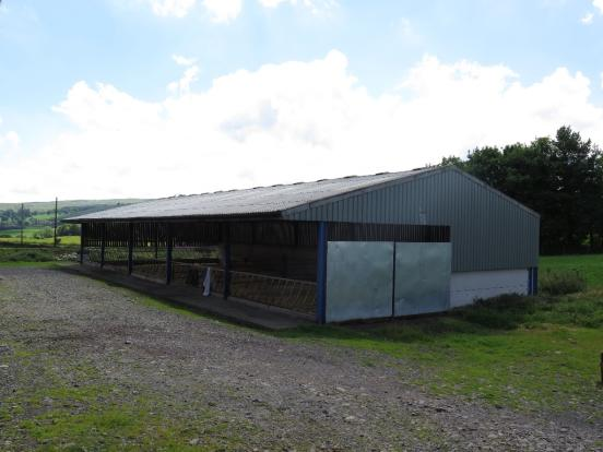 12. Cattle Court New