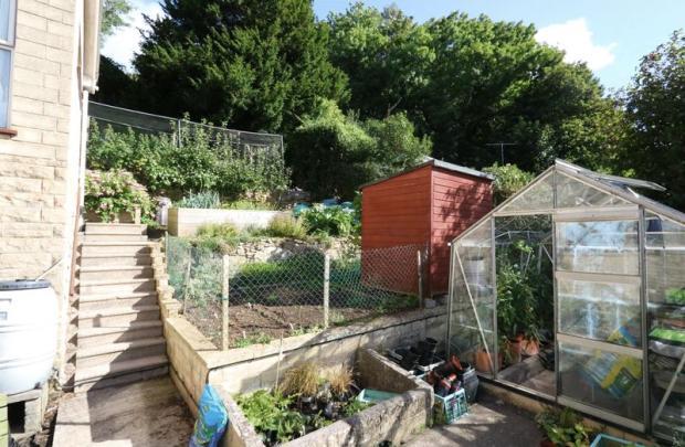 Vegetable Gard...