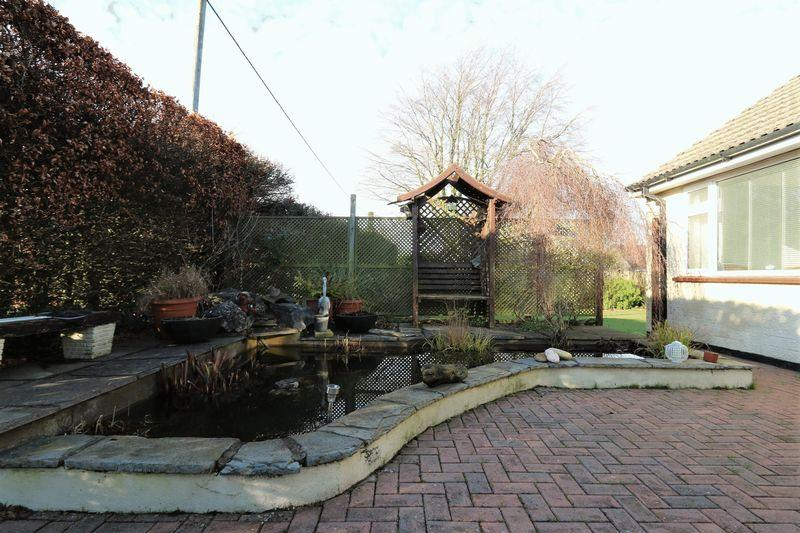 Feature pond