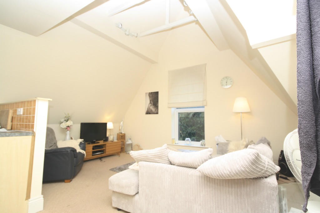 Lounge with vaulted