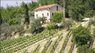 6 bed Country House in Montefiore dell`Aso...