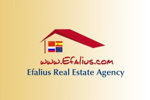 Efalius Real Estate Agency, Torreviejabranch details