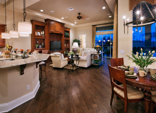 5 bed new home in Florida, Orange County...