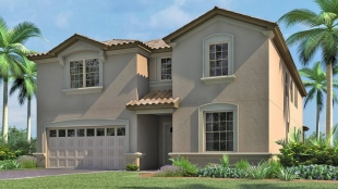 9 bedroom new development for sale in Kissimmee...