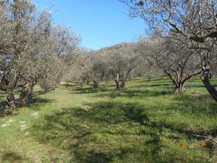 2 bed Country House in Trivento, Campobasso...