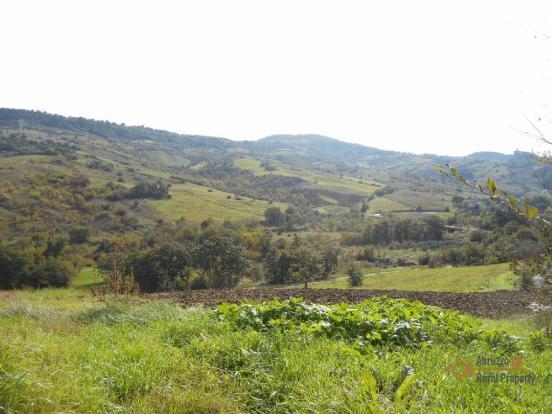 1500 sqm of land