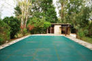 The pool and pool house