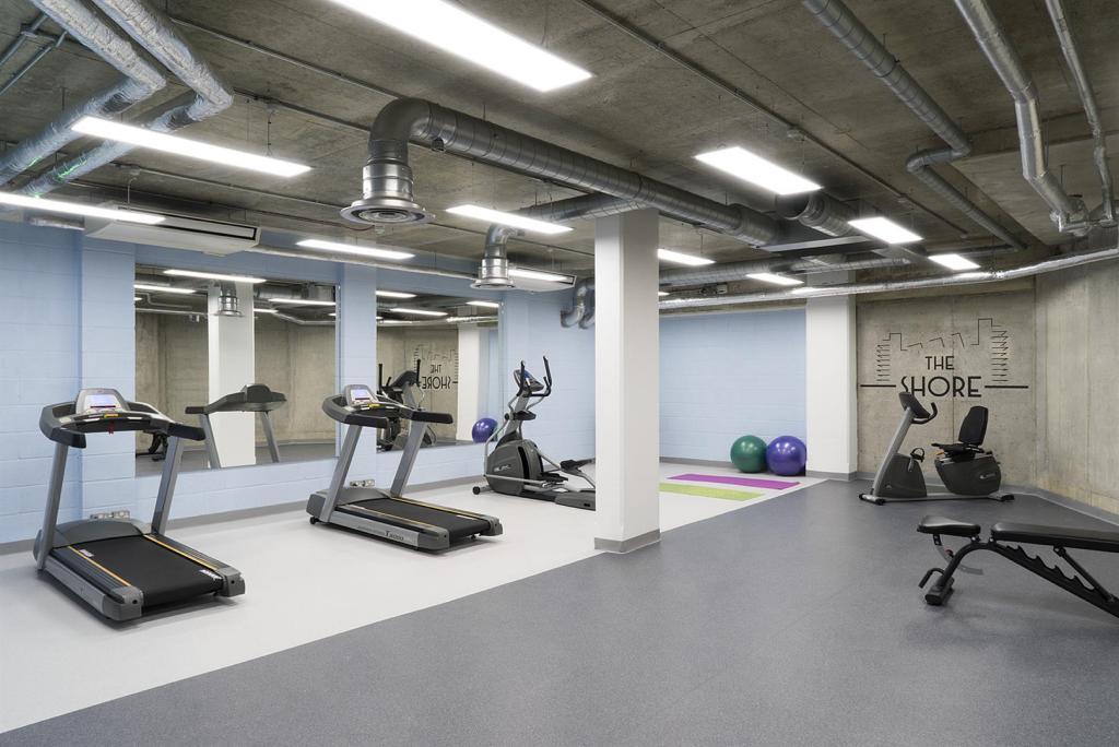 7 gym-web.jpg