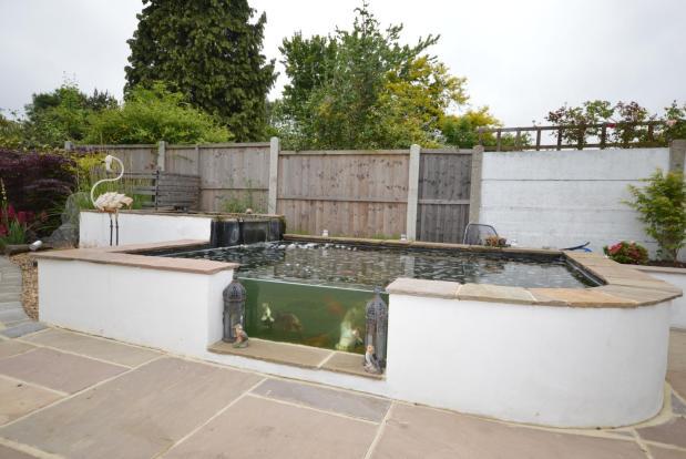 Garden & Pond