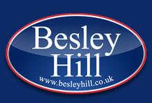Besley Hill , Fishponds