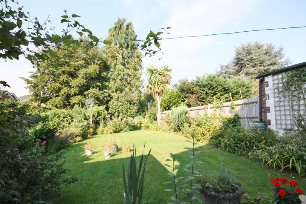 rear garden.jpg