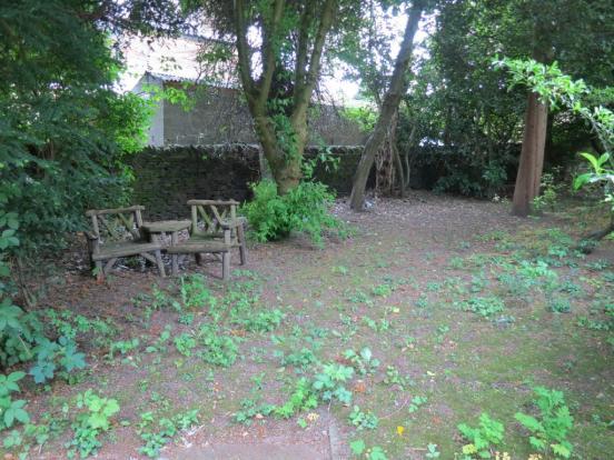 Rear Woodland Garden