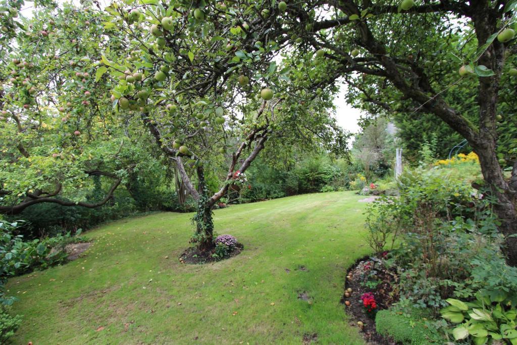 Little Orchard fruit