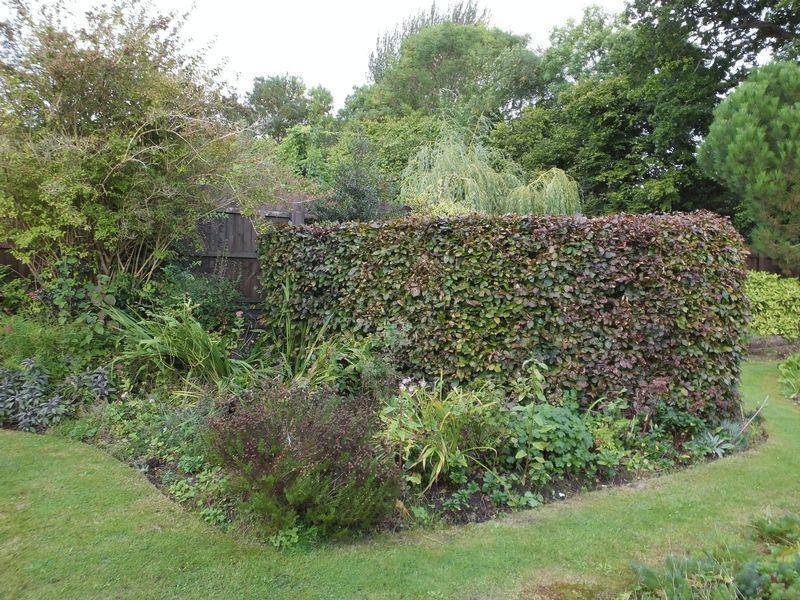 Garden 7
