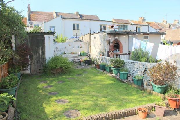 Newl garden 2.jpg