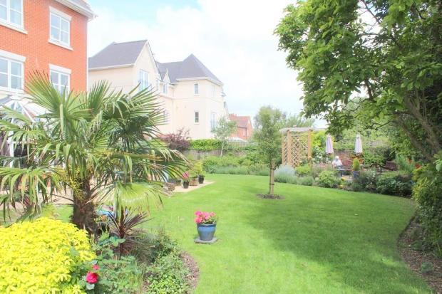 Rot garden 2.jpg