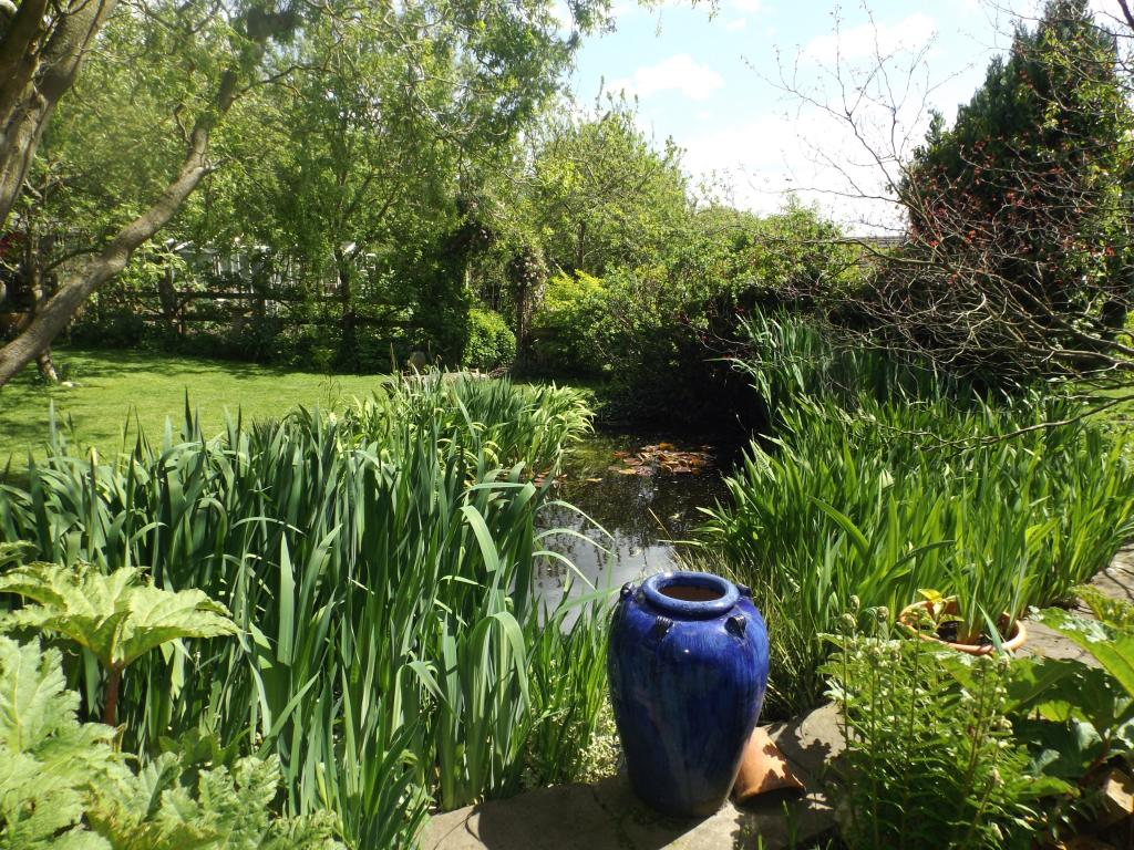 House for sale in sunnyacre old mold road gwersyllt for Garden pond moulds