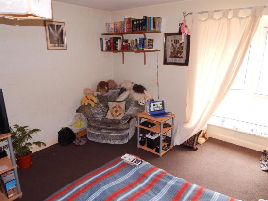 Living / Studio Room