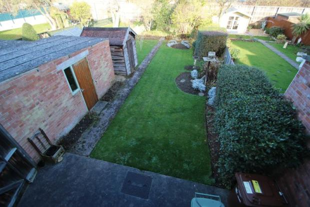 garden from up...
