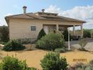 Finca in Catral, Alicante for sale