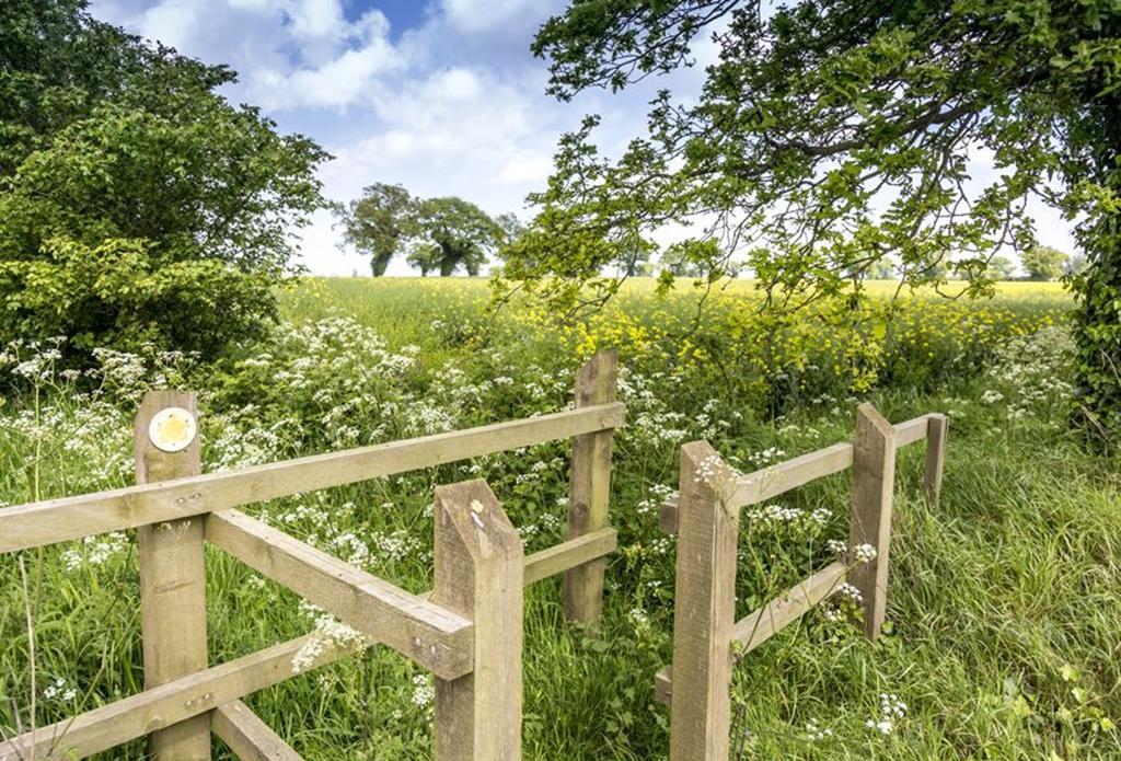 Bure Meadows: Local Area