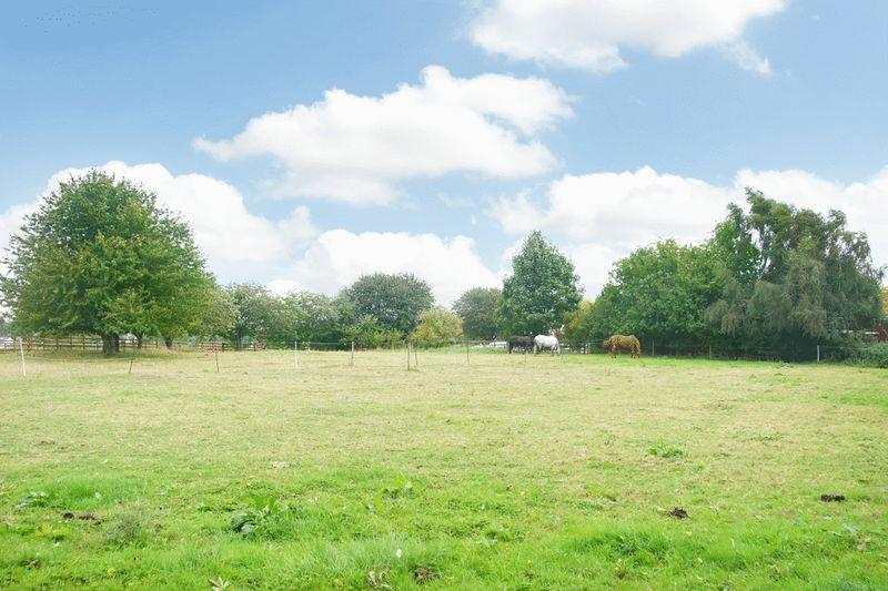 PADDOCK AVAILABLE