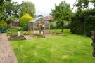 Veg plot and Greenhouse
