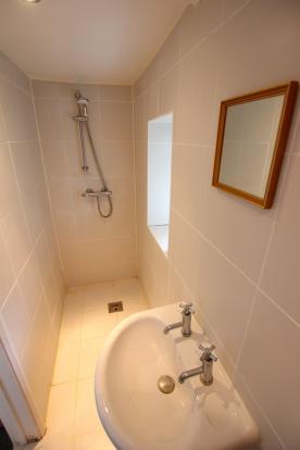 Basement Shower Room