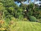 View Of Garden 2