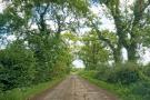 The Area - Semi - Rural: Nearby country road.JPG