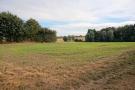 Adjacent field & public footpath