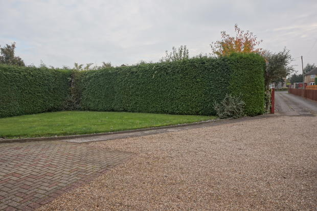 Drive and front garden