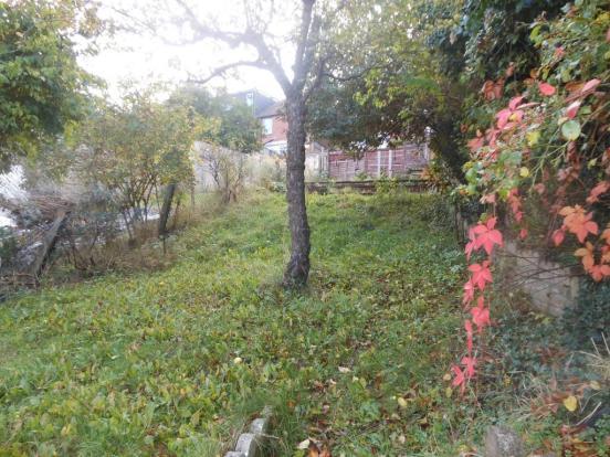 679. Garden.JPG