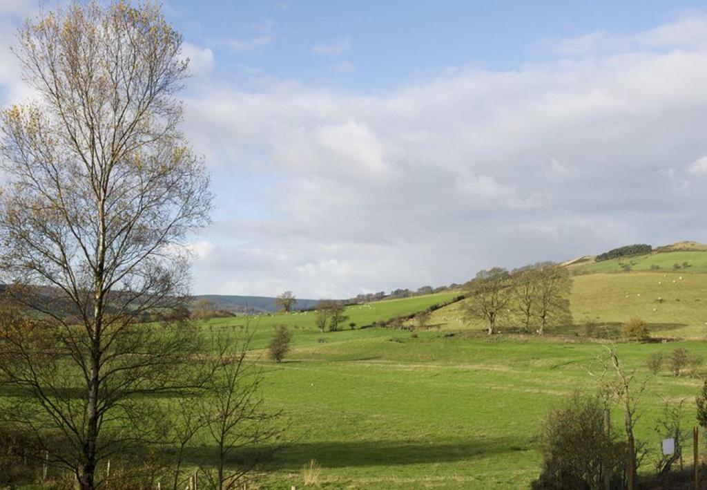 Octavia Gardens View